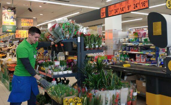 Pracownik Biedronki ustawiający rośliny na ekspozycji