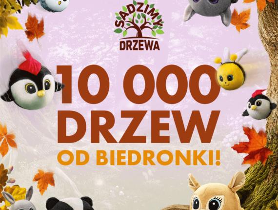 dziecięcy plakat 10000 drzew od Biedronki